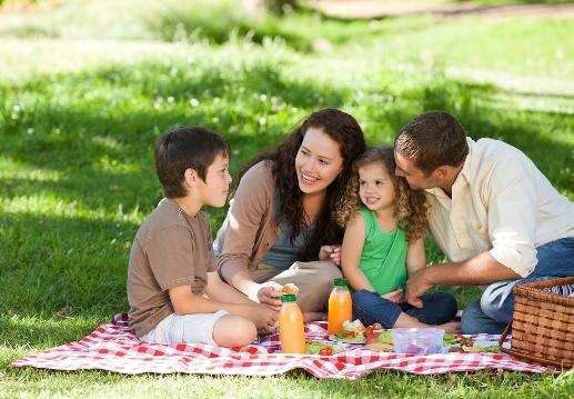 picnic familiar