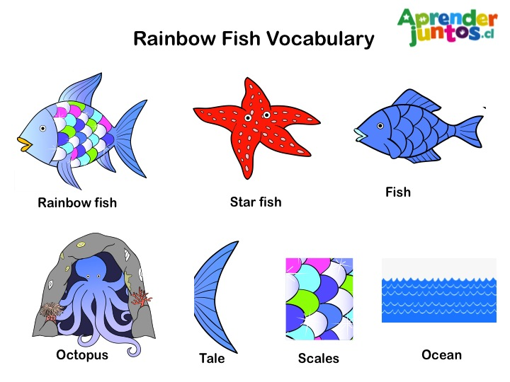 El Pez Arco Iris – The Rainbow Fish | Jardín Vitamina